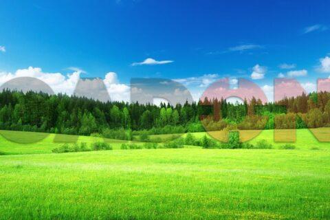 Green-Fields