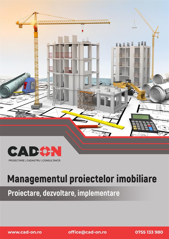 grafica cap. ''managementul proiectelor''